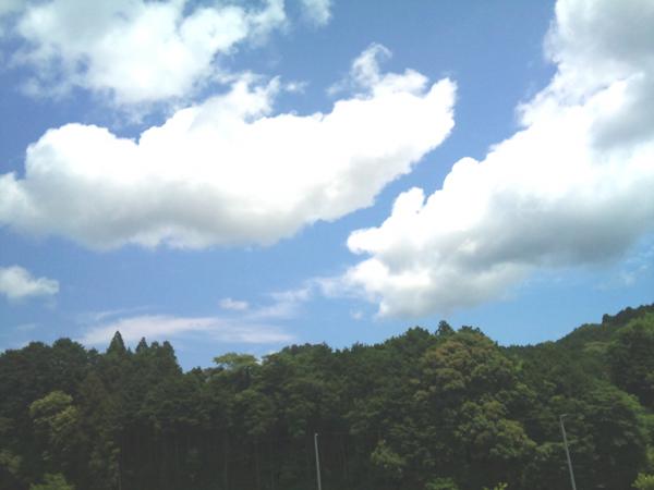 2012-06-13 12.45.34